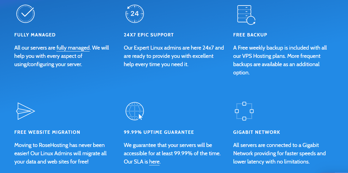 rosehosting black friday- features