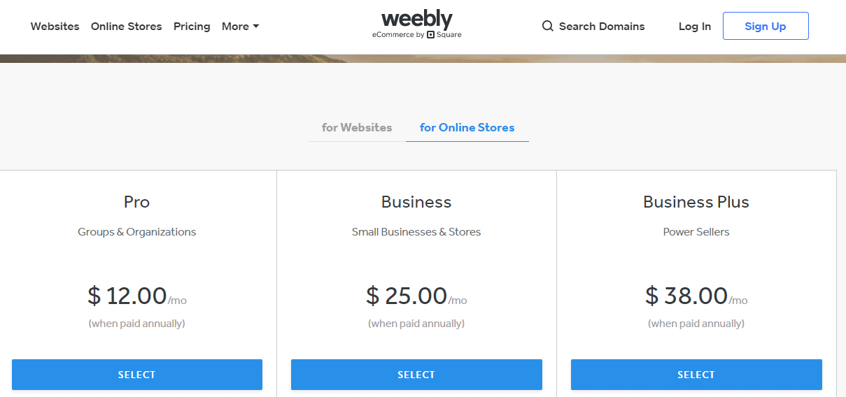weebly black friday- online store pricing
